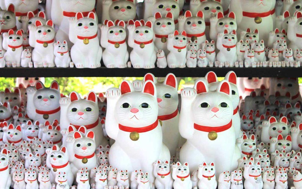 cat shrine tokyo