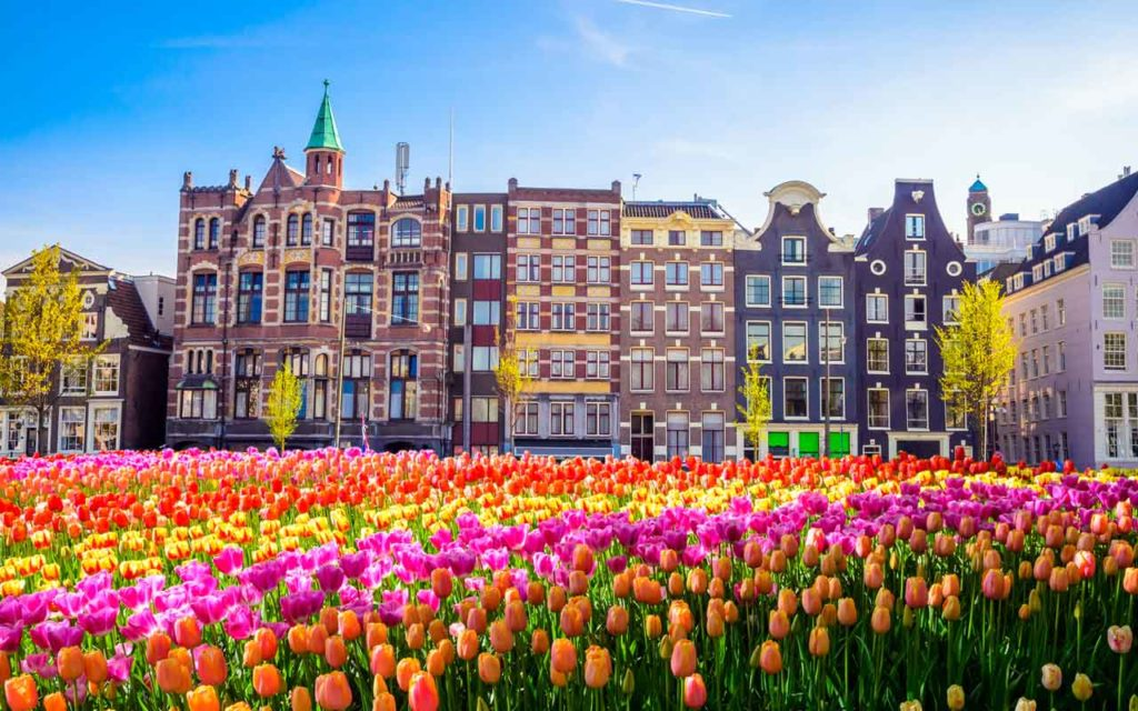 Best Vegan Destination: Amsterdam, the Netherlands
