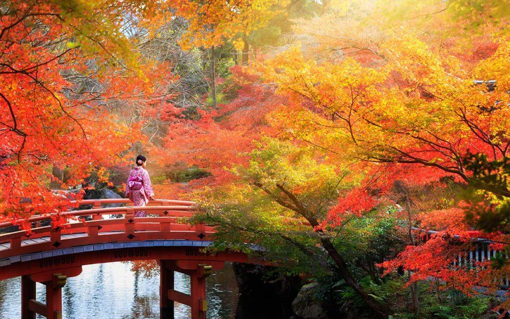 solo female travel kyoto