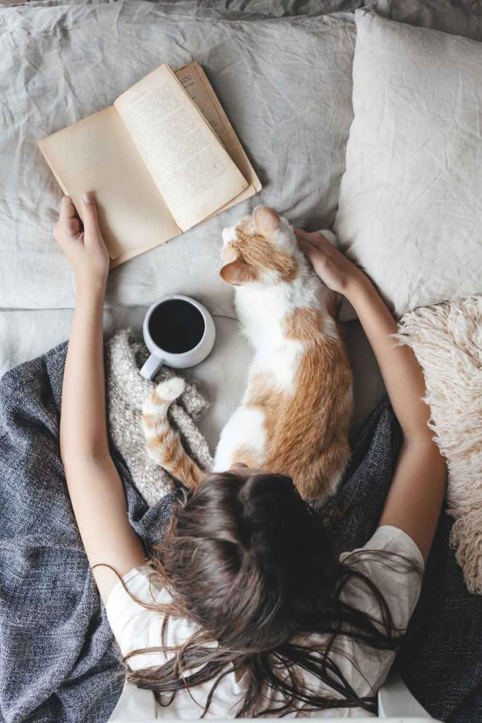 Staycation idea: reading a book with coffee while cuddling with a cat