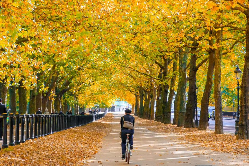 things to do in london cycle tour