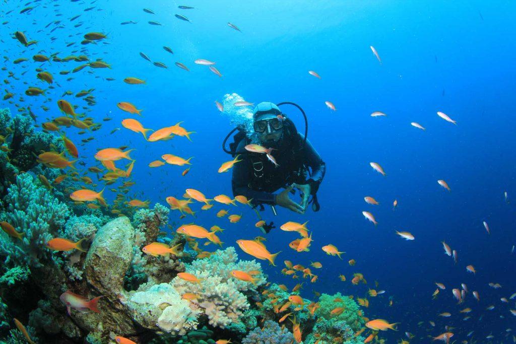 Extreme Sport: Scuba Diving