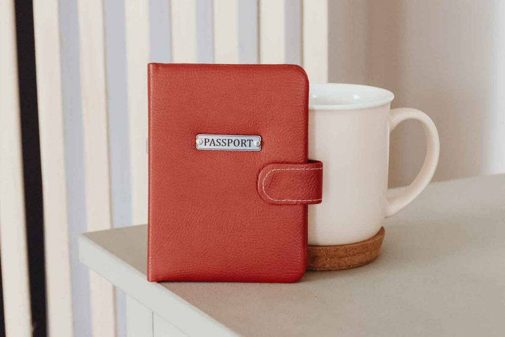 what is a passport wallet and how to use a passport holder