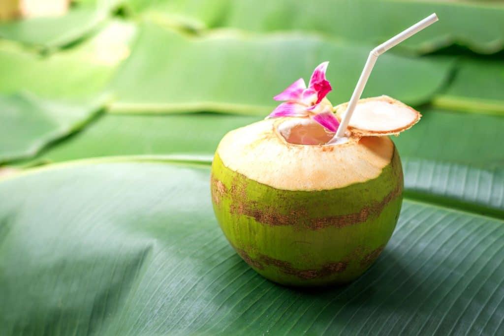 Asian fruit: Coconut