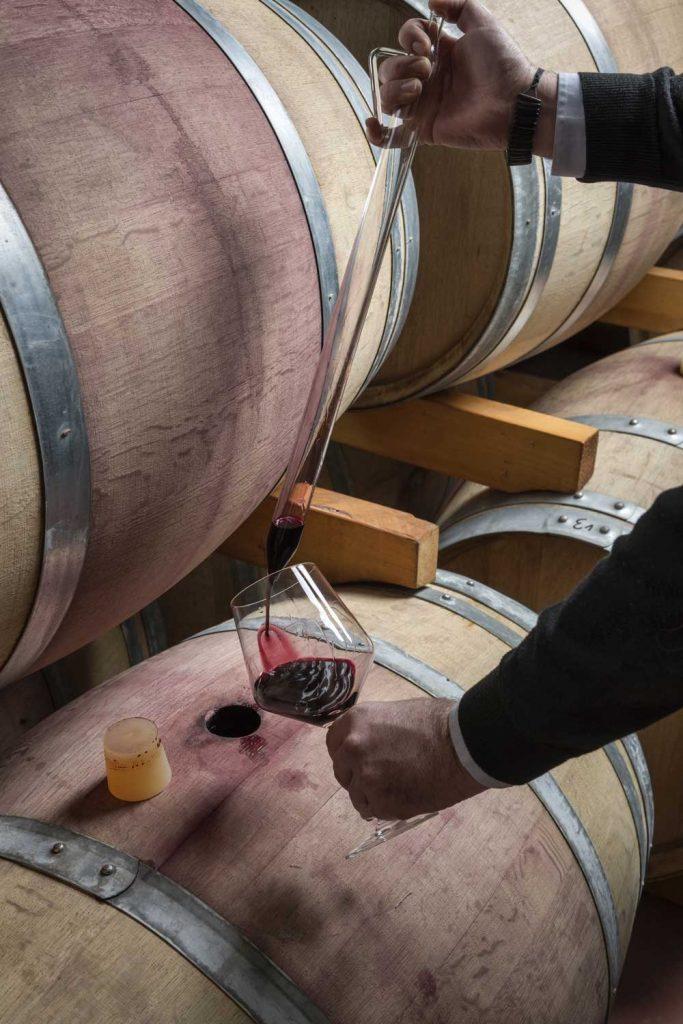 Wine tour & class