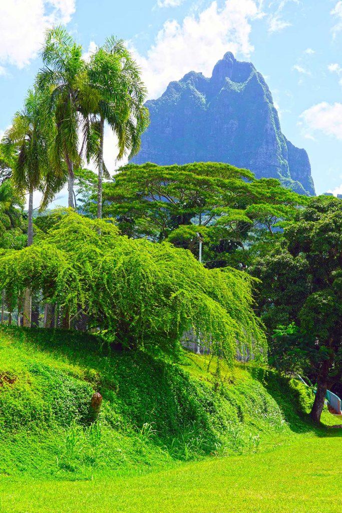 Paradise islands:  Oahu, Hawaii