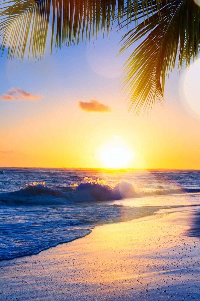 Paradise island: Barbados