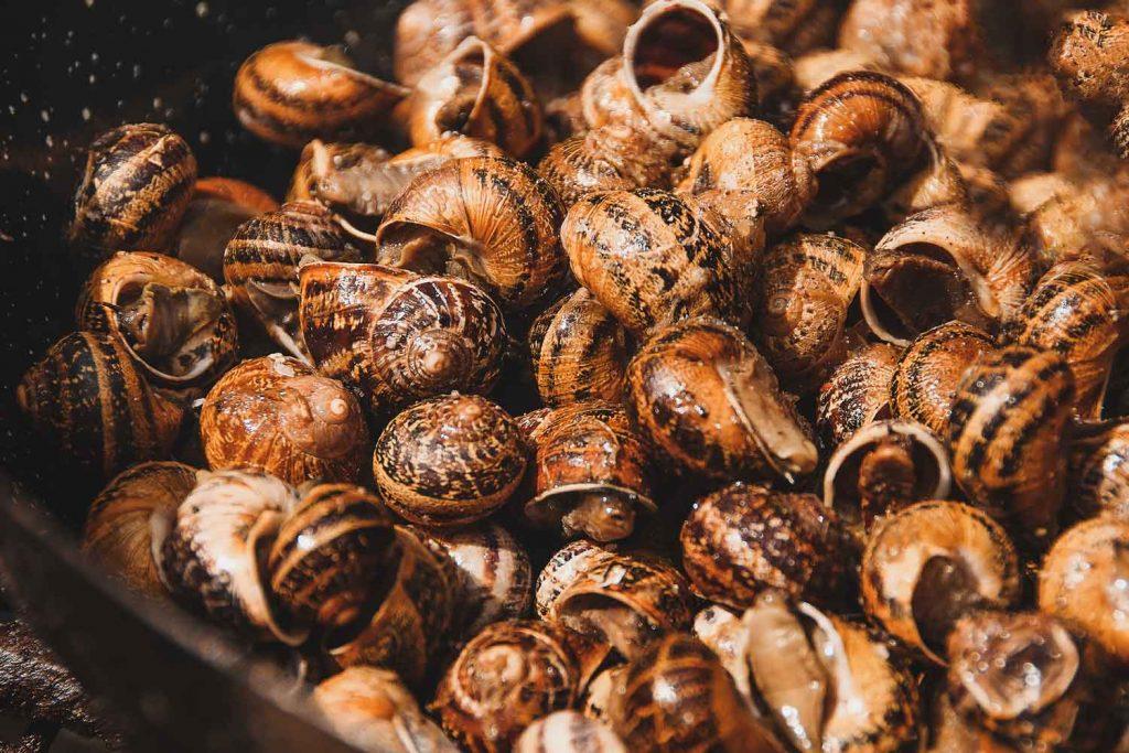 Greek delicacy Snails