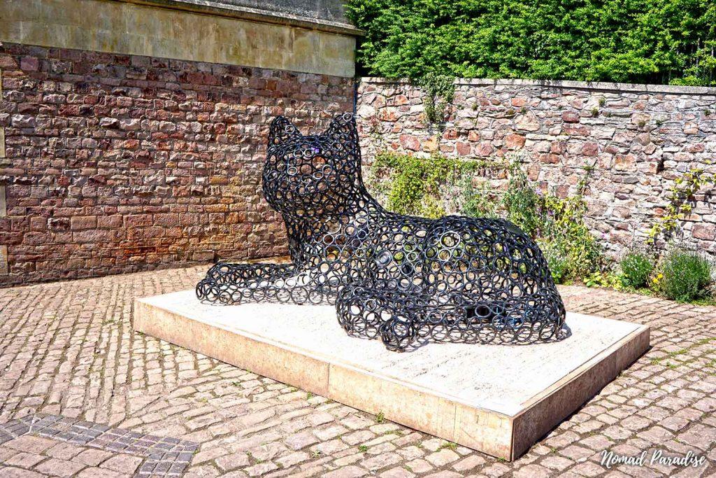 ashton gate cat bristol