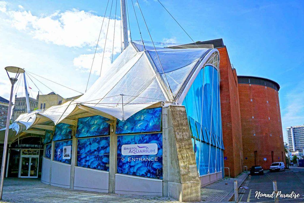 Bristol Aquarium